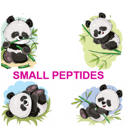 SMALL PEPTIDES